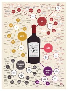 The Universe of Wine Infographic-Style: Do you know all of the different types of wine? This infographic organizes almost 200 types of wine by taste and style. Take advantage of this chart as a great way to discover new types of wine. Poster available for $24.99 #Wine #Cougartown
