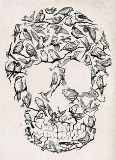birdskull by Mariana Mauro