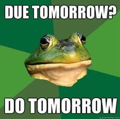 Foul Bachelor Frog 2.