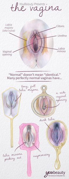 YouBeauty Presents:  The Vagina