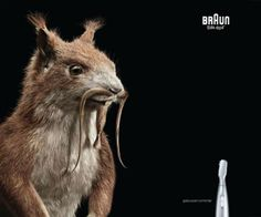 Just by placing animals, these ads turn from boring to something interesting | iLyke