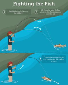 Fighting The Fish