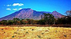 taman nasional blauran situbondo jatim, indonesia