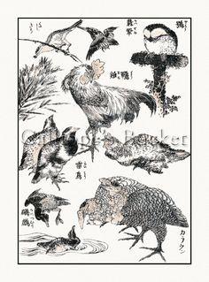 Hokusai Manga  Bird Illustrations 1 Ukiyo-e by CalliopesBucket