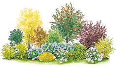 Blütenhecke zum Nachpflanzen