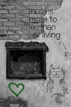 More To Life by Christy Patino Photography