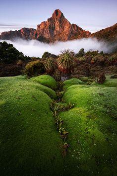 sublim-ature:  South-West NP, Tasmania, Australia, by Chris Wiewiora, on 500px.
