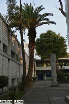 TÍTULO DE LA OBRA: Mi escuela. AUTOR: Jimena Luna.  FECHA DE REALIZACIÓN:24/nov/15 APERTURA DE DIAFRAGMA: F6.3 VELOCIDAD DE OBTURACIÓN: 1/160 ISO: 200