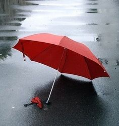 cold rainy day....you can stand under my umbrella