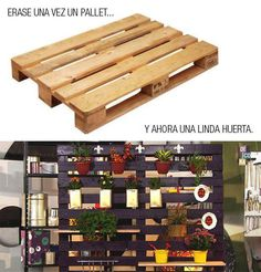 Reciclaje: pallet-huerto/jardin vertical