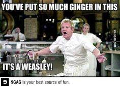 bahahaha I love Chef Ramsey