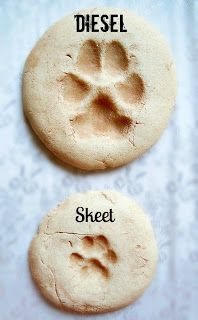 """Paw Prints in """"cement""""! So I've wanted to do this for a while now...I was actually going to do it in cement (maybe I still will) but this i..."""