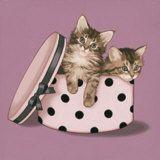 Chapeau! Láminas por Maryline Cazenave