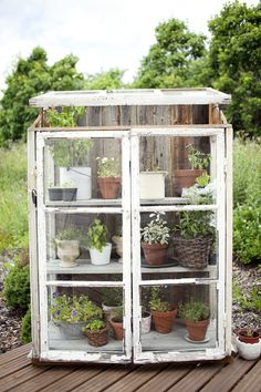 Wow! Wonderful way to use antique pie safe or distress a kitchen cabinet to make a small greenhouse. Note the window on top.