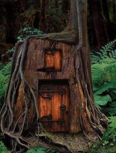 Tree House, Humboldt County, California      Get outta my yard. Stalkers.