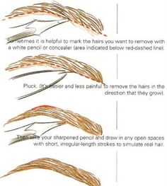 eyebrows -- I'm terrible at them, this should be helpful!