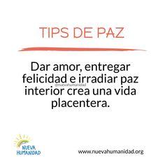 (20) SocialGest Paz Interior, Calendar, App, Happiness, Apps, Life Planner, Menu Calendar