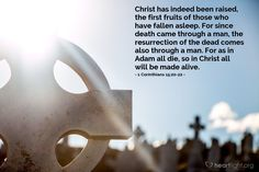 1 Corinthians 15:20-22—Christ has indeed been raised, the first fruits of those who have fallen asleep. For since death came through a man, the resurrection of the dead comes also through a man. For as in Adam all die, so in Christ all will be made alive.