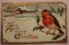 Merry Christmas Holly Singing Bird Gold Trim Postcard R31