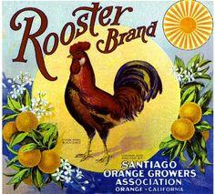 Items similar to Orange County Rooster Orange Citrus Fruit Crate Label Art Print on Etsy
