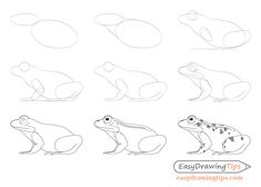 How to Draw a Frog Step by Step Tutorial - EasyDrawingTips - How to Draw a Frog. - How to Draw a Frog Step by Step Tutorial – EasyDrawingTips – How to Draw a Frog Step by Step T - Neck Drawing, Snake Drawing, Frog Drawing, Drawing Now, Basic Drawing, Drawing Lessons, Step By Step Drawing, Easy Animal Drawings, Easy Drawings