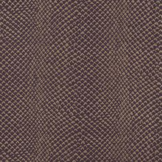 zebra wallcovering brown london chic collection exotics