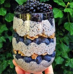 14 chia seed pudding recipes If you're tired of waking up every day to the same scrambled eggs or bowl of Cheerios, it's time for an intervention. Chia seed pudding is proof that breakfast Vegan Desserts, Raw Food Recipes, Vegetarian Recipes, Chia Seed Breakfast, Heathy Breakfast, Breakfast Recipes, Morning Breakfast, Breakfast Club, Breakfast Bowls