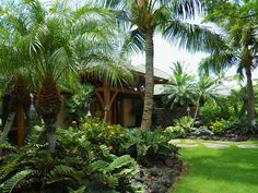 Private Residence, lgordonlandarch.com, beautiful front yard landscape, lush, tropical, island style