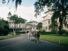 Horse carriage rides in Jekyll Island, Georgia.