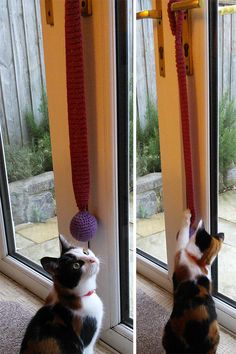 Free Knitting Pattern for Bouncy Door Hanger Cat Toy Crochet Dog Sweater, Knitted Cat, Knitted Animals, Loom Knitting, Knitting Stitches, Free Knitting, Yarn Projects, Knitting Projects, Knitting Patterns For Dogs