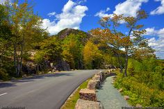 The Park Loop Road in Acadia National Park is road biking heaven: one-way with two lanes of smooth pavement through a national park.
