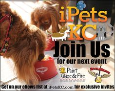 Join iPetsKC for their next event at Paint, Glaze, & Fire