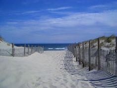 Seaside park - Google 検索
