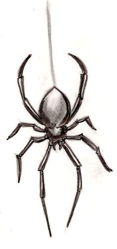 Black Widow Spider Tattoo by ~Metacharis on deviantART
