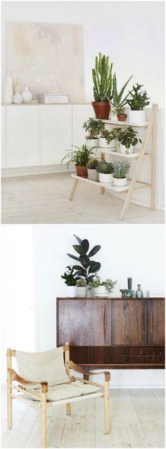 Decorar con plantas dentro de casa. Visto en www.ecodecomobiliario.com