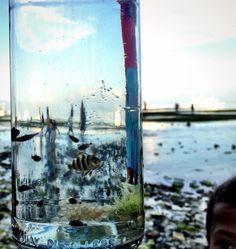 In a bottle :)