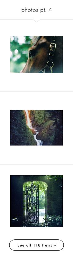 """""""photos pt. 4"""" by sinesnsingularities ❤ liked on Polyvore featuring animals, pictures, backgrounds, horse, nature, images, photos, places, green and scenery"""