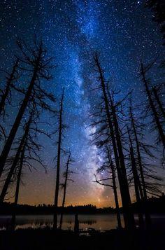 The Milky way... One of how many million billion trillion galaxies...