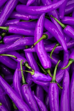 Here's something to look for at the farmers markets - a peck of purple peppers! They're good for you, too.
