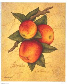 1000 images about pinturas on pinterest manualidades - Cuadros para la cocina ...