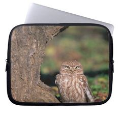 >>>Hello          	Little Owl Laptop Computer Sleeves           	Little Owl Laptop Computer Sleeves We provide you all shopping site and all informations in our go to store link. You will see low prices onHow to          	Little Owl Laptop Computer Sleeves please follow the link to see fully r...Cleck Hot Deals >>> http://www.zazzle.com/little_owl_laptop_computer_sleeves-124707409696678665?rf=238627982471231924&zbar=1&tc=terrest