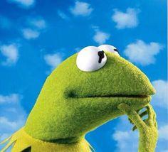 Kermit album😂😹 should've brought it Kermit And Miss Piggy, Kermit The Frog, Jim Henson, Sapo Kermit, Funny Kermit Memes, Fraggle Rock, The Muppet Show, Im Weak, Cute Frogs