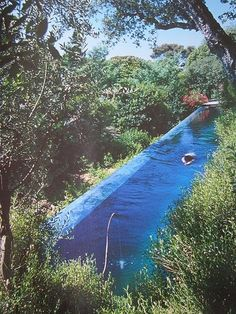 piscina, lap pool in paradise, my dream