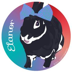 Elanor the bunny wearing a bow!