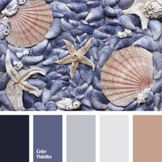 The combination of translucent gray-violet shades with muted brown-pink and blue-violet is completed by dark blue. This scheme can be used to design a spacious bathroom, a lounge, a hallway or a reception room.
