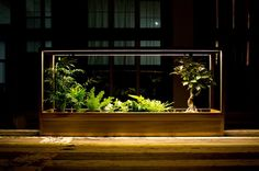 """""""Plant-in City"""" Art Installation Uses Stackable Terrariums To Create a Lush Urban Environment Indoor Garden, Indoor Plants, Outdoor Gardens, Terrarium, Plantas Indoor, Sound Installation, Art Installations, Eco Architecture, Interactive Art"""