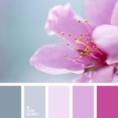 paleta-de-colores-1233