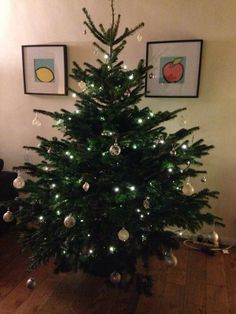 Thanks to Serena Thirlwell on Twitter for this entry to the #ClaphamTree competition!