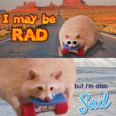 True Memes, Dankest Memes, Funny Memes, Jokes, Pretty Meme, The Dark World, Meme Lord, Me Too Meme, Wholesome Memes