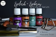 Eyelash + Eyebrow Growth Serum — Seed to Sole Natural Essential Oils, Essential Oil Blends, Natural Oils, Young Living Oils, Young Living Essential Oils, Drug Store Face Moisturizer, Eyebrow Growth Serum, Lavender, Shape Eyebrows